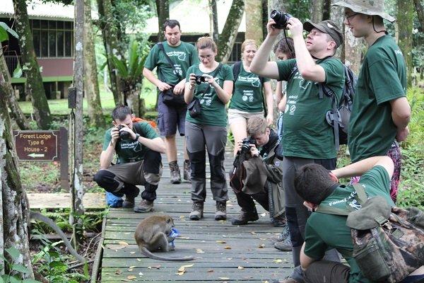 Makaki jawajskie, to małpy które bardzo szybko odkryły, że człowiek może mieć zawsze coś do jedzenia. Właśnie zjadają ukradzione z naszych plecaków chrupki.