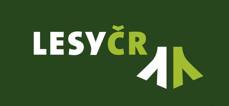 Czeski minister finansów planuje sprywatyzowanie lasów państwowych