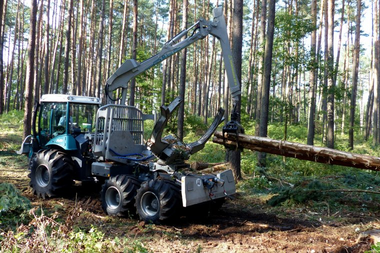 Pomimo postępującej mechanizacji prac leśnych ilość wypadków utrzymuje się na wysokim poziomie