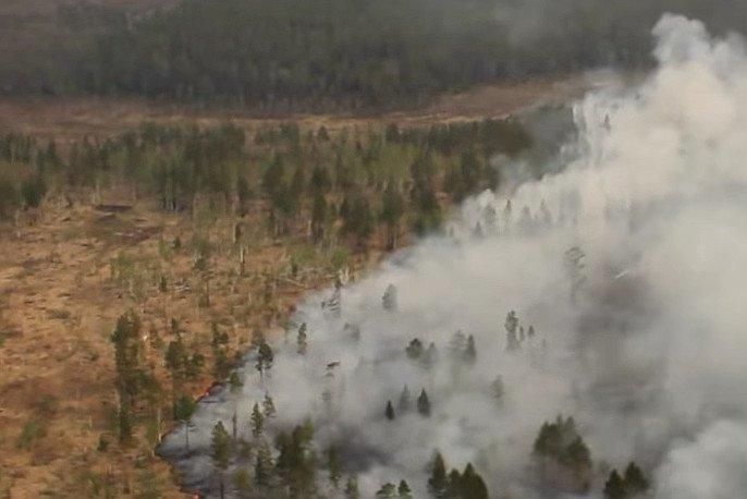 Potężne pożary lasów na Syberii