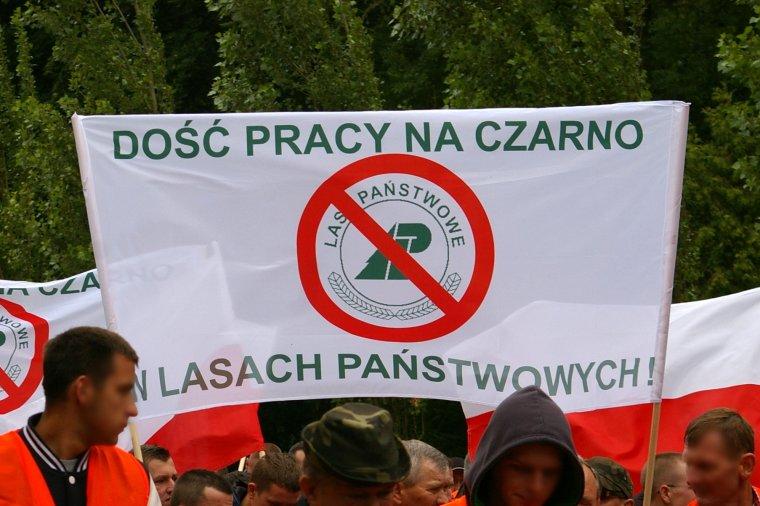 Kolejny protest firm leśnych przeciw polityce Lasów Państwowych odbędzie się 2. września w Szczecinie