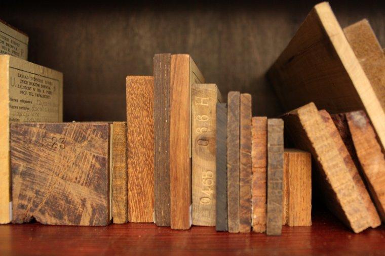 Drewno tropikalne charakteryzuje się ciemniejszym od europejskiego, zabarwieniem (H – drewno pochodzące z Azji)