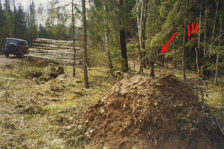 Praca przy pozyskaniu drewna na terenach dawnych poligonów generuje dodatkowe niebezpieczeństwo