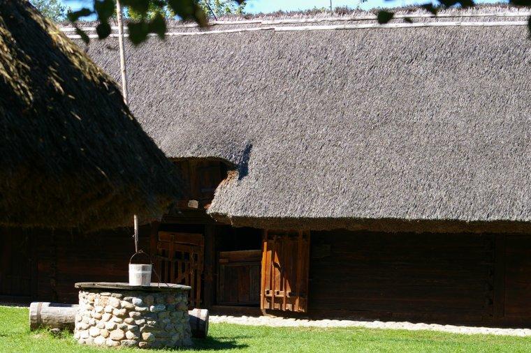 Tradycyjna metoda krycia dachów trzciną jest coraz popularniejsza również w Polsce