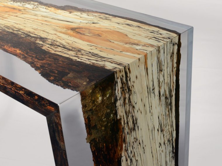 Kolekcja Fungi oparta jest na zmurszałym drewnie
