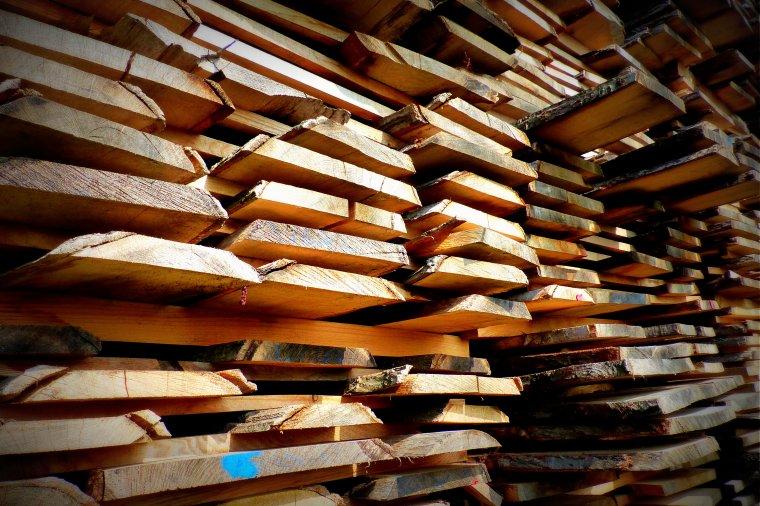 Firmy drzewne potrzebują wykształconych kadr. Czy nowa konkurencja w edukacji poprawi sytuację?