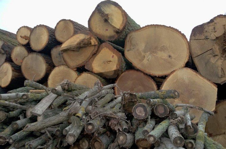 Ze zmianą definicji drewna na cele energetyczne wiążą się poważne zmiany na całym rynku surowca drzewnego