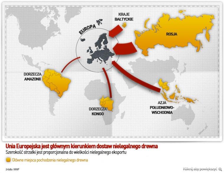 Światowe kierunki sprzedaży pozyskanego nielegalnie drewna