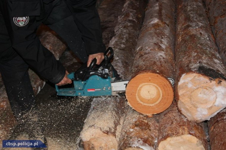 Udaremniono przemyt papierosów ukrytych w kłodach drewna