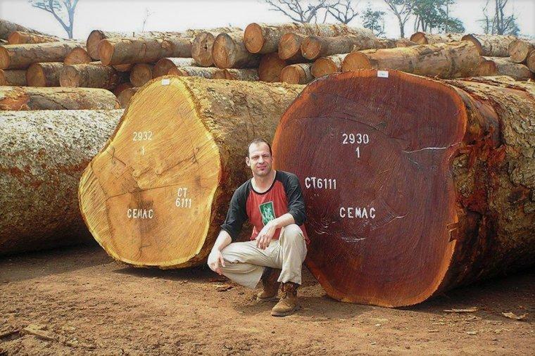 Marcin Makocki opowiadał o gospodarce leśnej w Kotlinie Kongo
