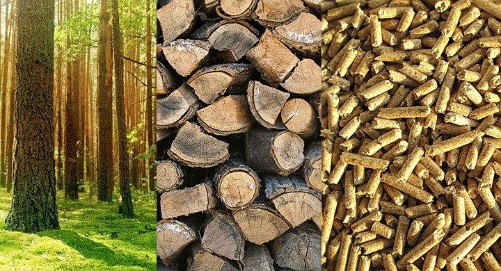 Energia z Drewna – dwudniowa konferencja na targach DREMASILESIA 2017