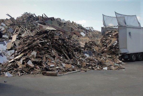 Projekt BioReg ma dać odpowiedź jak efektywnie wykorzystać odpady drzewne