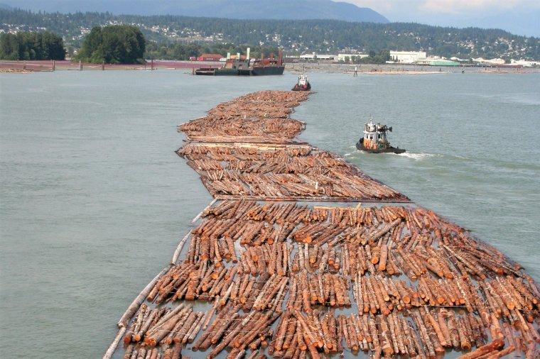 Transport surowca drzewnego w Vancouver