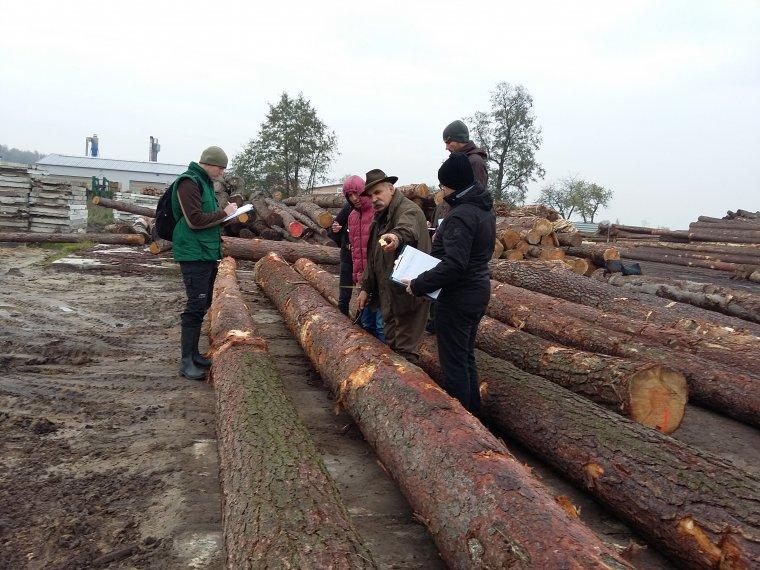 Kurs brakarzy surowca drzewnego