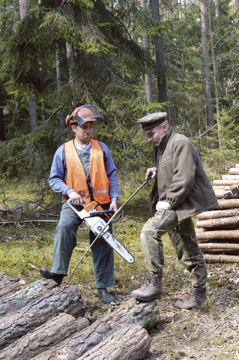 Co wolno leśniczemu?