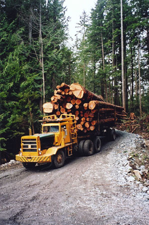 fot. BC Forestry Revitalization<br>Trust