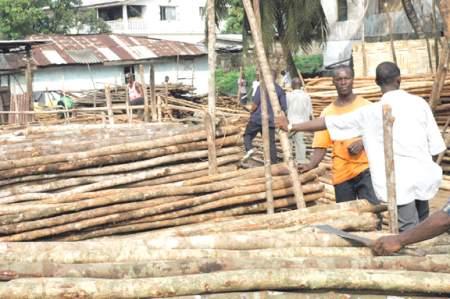 Drewno na targu w Monrovi<