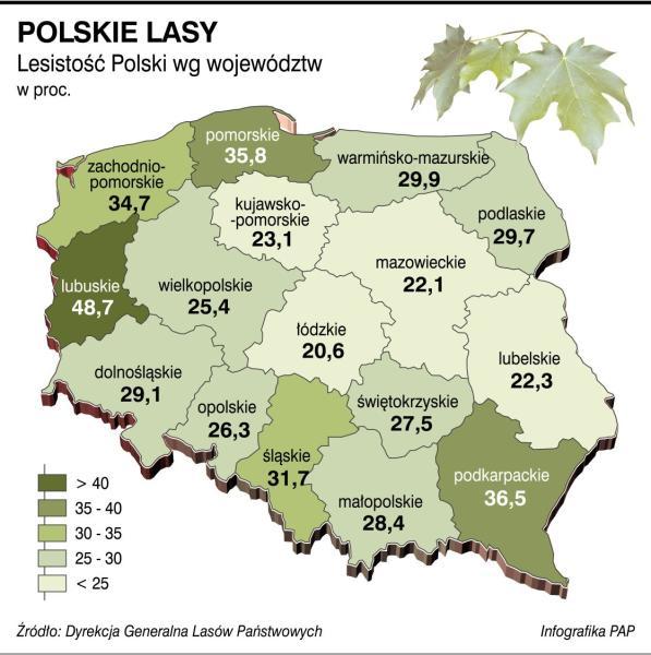 fot.: (PAP) Nauka w Polsce