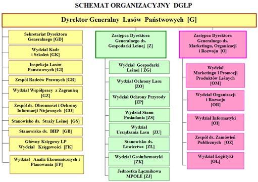 <font color=gray>Nowa struktura organizacyjna<br>Lasów Państwowych</font>