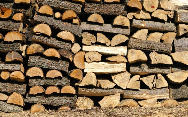 Ceny drzewnych materiałów opałowych w Niemczech