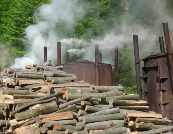 Wysokie ceny drewna dotykają nie tylko tartaki. Z powodu coraz mniejszej opłacalności spada m.in. wielkość krajowej produkcji węgla drzewnego.