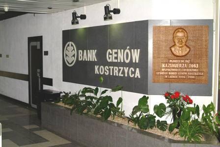 Leśny Bank Genów Kostrzyca