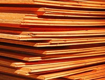 Bydgoski zakład jest jednym z największych i najstarszych zakładów produkujących sklejkę w naszym kraju.