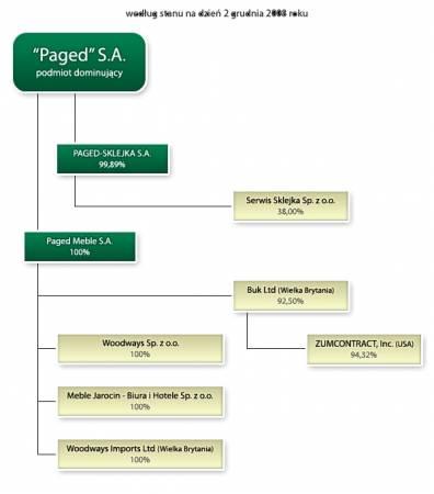 Schemat grupy kapitałowej Paged