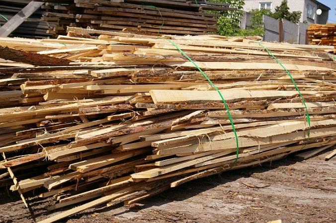Według nowych przepisów odpady drzewne nie są biomasą dla dużych elektrowni.