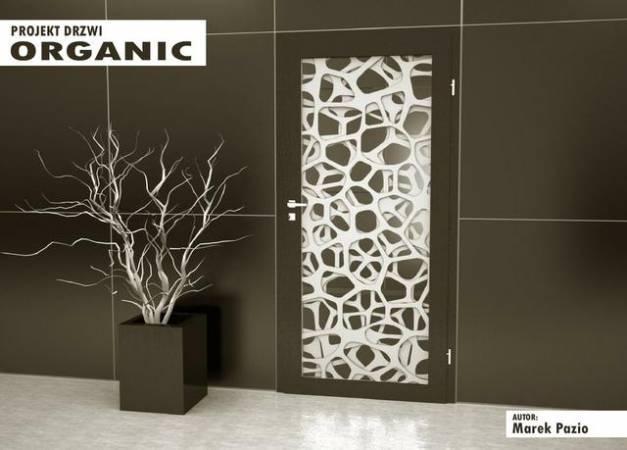 Drzwi Organic - Zdobywca I miejsca w konkursie Drzwi do Kariery