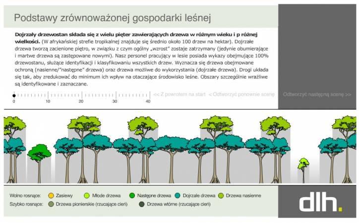 Zasady zrównoważonego leśnictwa