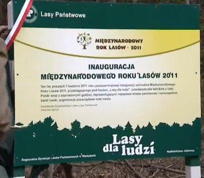 Inauguracja obchodów Międzynarodowego Roku Lasów w Polsce