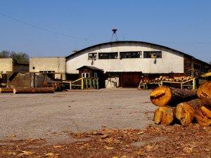 W wyniku protest przewoźników pustoszeją place surowca zakładów przerabiający drewno