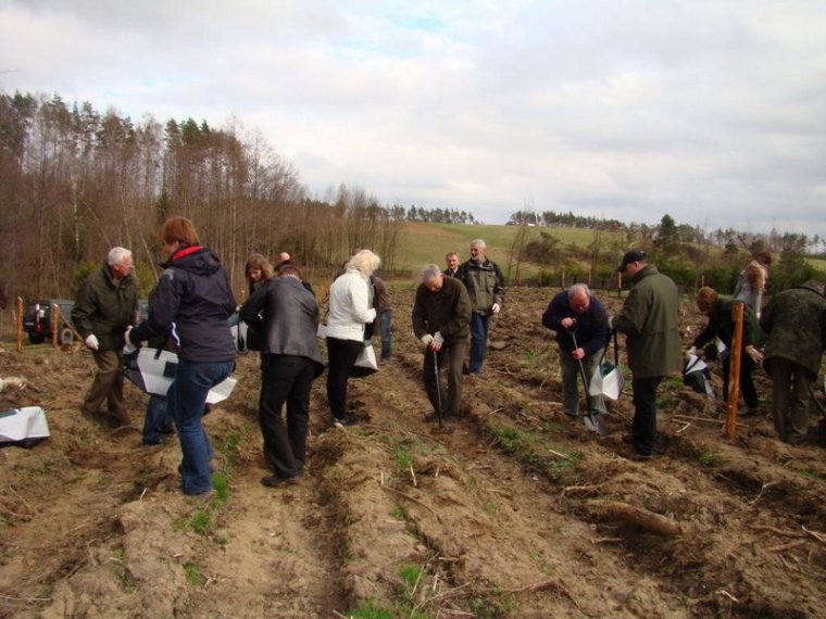 Uczestnicy konferencji posadzili ponad pół tysiąca sadzonek dębu i buka