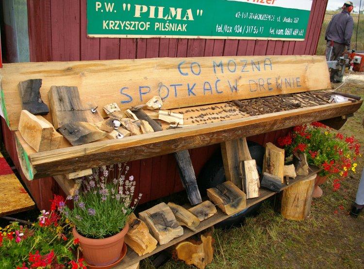 Jak różne przedmioty znajdują się w drewnie można się przekonać oglądając kolekcję p. Krzysztofa Pilśniaka, właściciela firmy Pilma