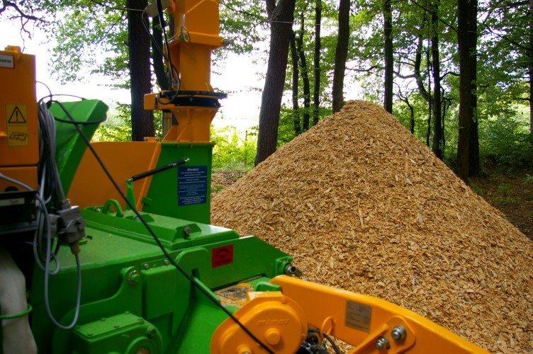 Odpady drzewne to jedno z głównych źródeł biomasy dla energetyki