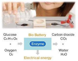 Schemat działania bio-baterii