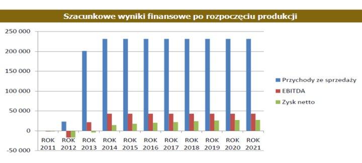 Prognoza finansowa spółki