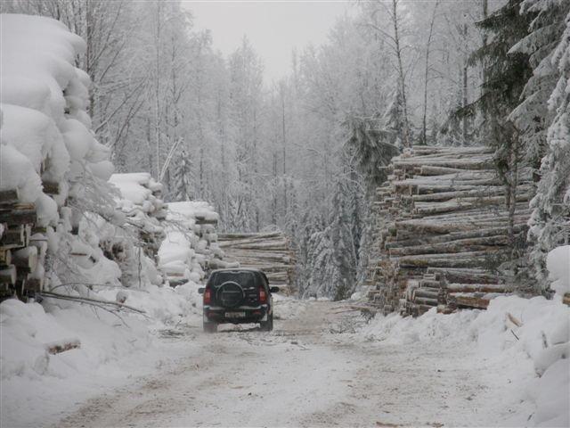 Od trzech lat spółki zależne Centrozpau prowadzą przemysłową wycinkę ok. 200 tys. m3 drewna rocznie w masywie leśnym Madmas (Komi/Rosja).