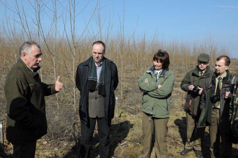 Uczestnicy spotkania na plantacji topoli