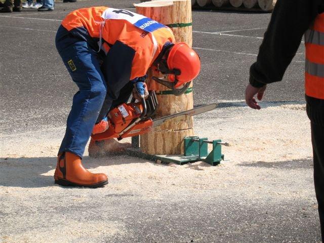 Sprawdzian praktycznych umiejętności pracy pilarką
