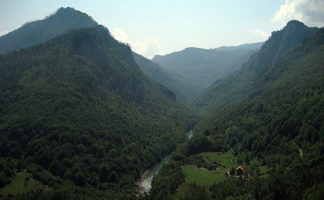 Lasy czarnogórskiego parku narodowego Durmitor