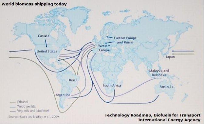 Główne kierunki transportu biomasy na świecie