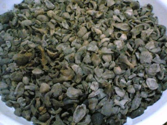 Palm Kernel Shell (PKS) to rozdrobniona pestka owocu olejowca gwinejskiego.