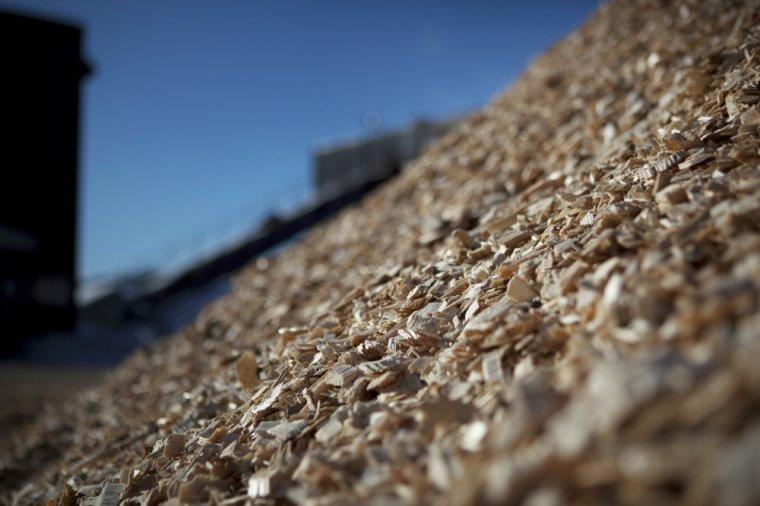 Opłacalność współspalania biomasy zależy od rządowego wsparcia