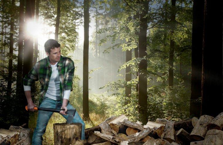 Dlaczego wiosną należy rąbać drewno?