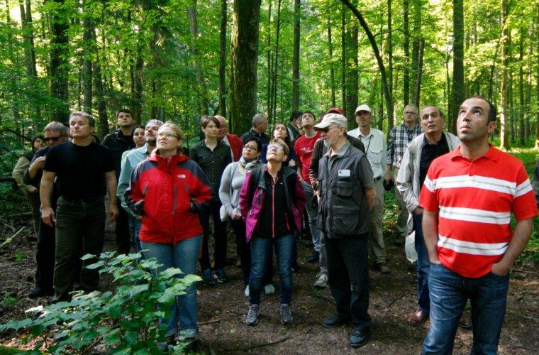 Uczestnicy obrad mieli okazję odwiedzić Puszczę Białowieską