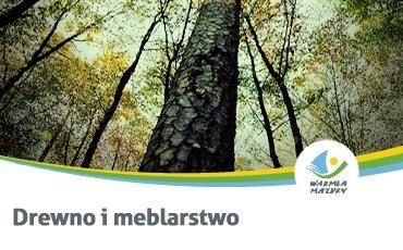 Samorząd warmińsko-mazurski stawia na przemysł drzewny