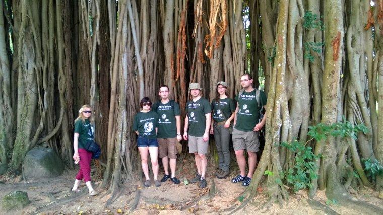 Wspólne zdjęcie w korzeniach wielkiego fikusa w Ogrodzie Botanicznym Roseau