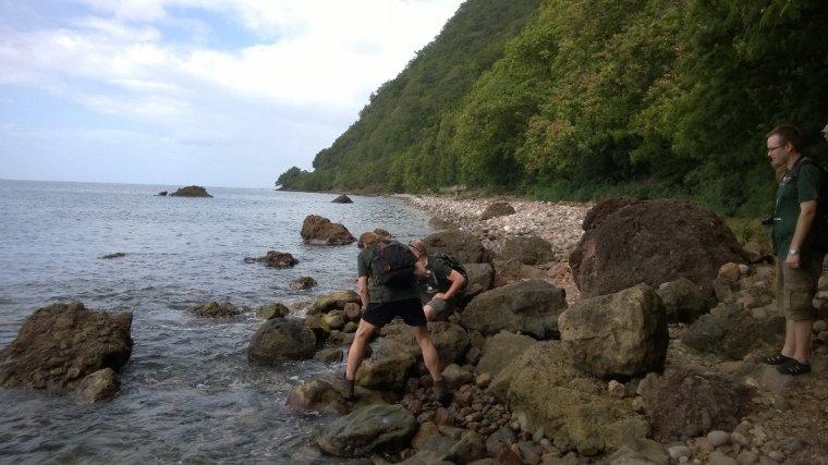 Uwagę przyciągają biegające wśród kamieni kraby